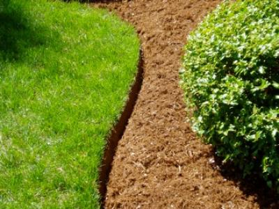 Repair lawn edges