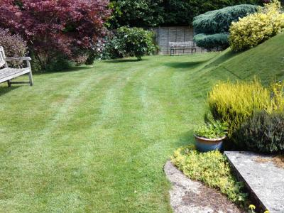 Customers Lawn