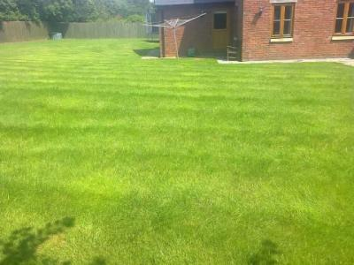 Large lawn treated by Abergavenny