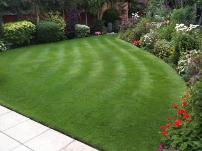 A Lawn From A Barnet Customer