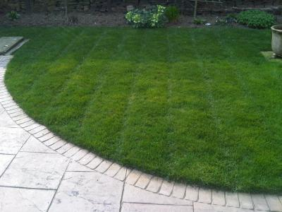 Customer's lawn treated by GreenThumb Bradford West