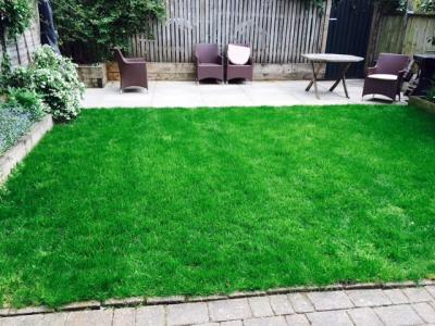Lush Lawn that We Treat in London