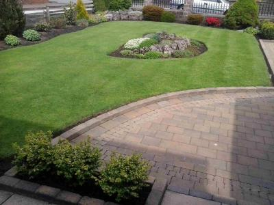 A great example of a customers lawn which is treated by GreenThumb Bury