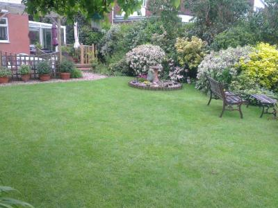 Another great example of a customers lawn which is treated by GreenThumb Christchurch