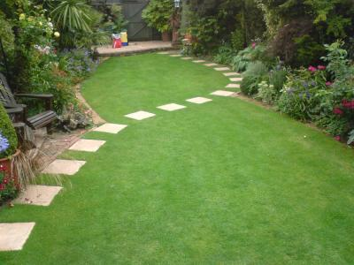 Beautiful Lawn With Spiral Paving – Treated By GreenThumb Croydon