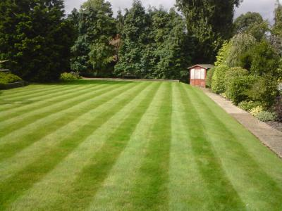 Large Striped Lawn - Treated By GreenThumb Croydon