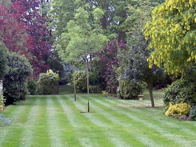 Customer Lawn Scunthorpe