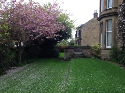 A customer's lawn treated by GreenThumb Edinburgh.