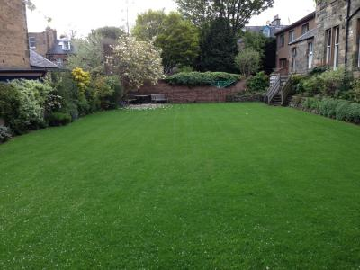 A great example of a customers lawn after being treated by the GreenThumb Edinburgh Team.