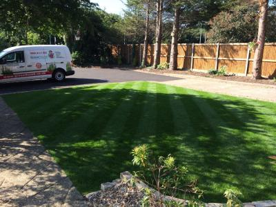 A great example of a customers lawn after being treated by the GreenThumb Fakenham Team