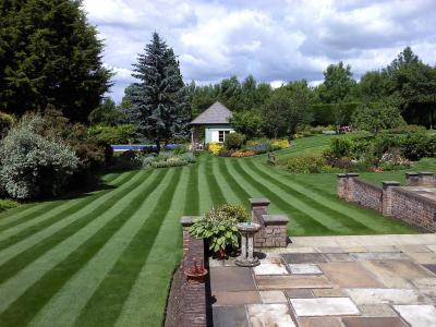 A great lawn by the GreenThumb.