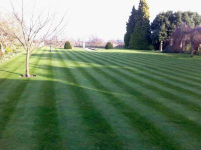 A Customers large lawn which is treated by GreenThumb Hastings