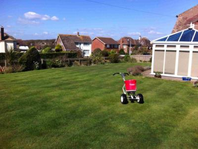 A great example of a customers lawn after being treated by the GreenThumb Hastings Team.