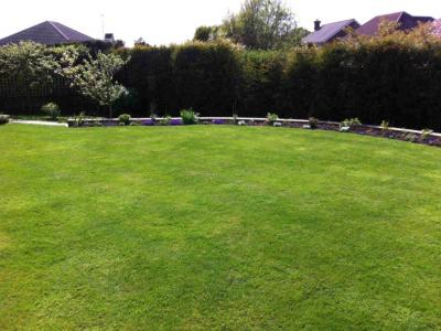 A Customers large lawn which is treated by GreenThumb Hastings.