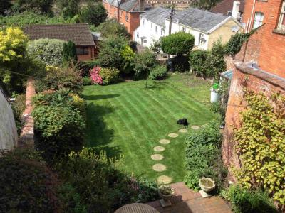 A great example of a lawn treated by Greenthumb Honiton