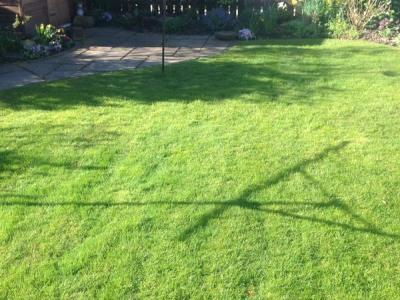 A typical lawn treated by Greenthumb Redcar