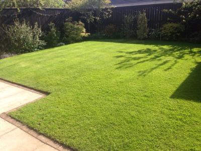 Another example of a lawn treated by Greenthumb Redcar