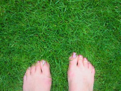 A close-up of a treated lawn