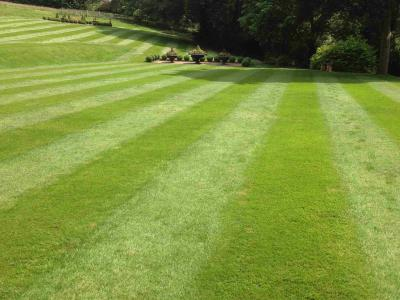 A large stripy lawn treated by Greenthumb Wakefield