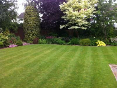 A stripy lawn treated by Greenthumb Wharfedale