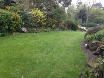 A great example of a lawn treated by Greenthumb Wharfedale
