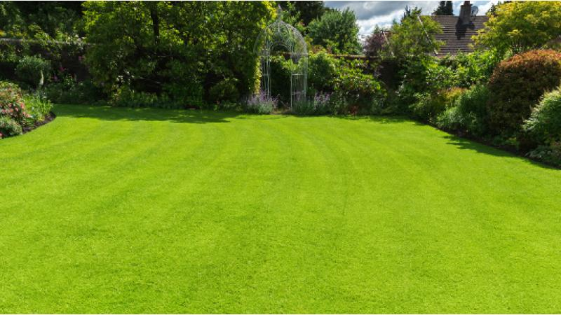 Lawn Makeover Your Local Lawn Care Specialists