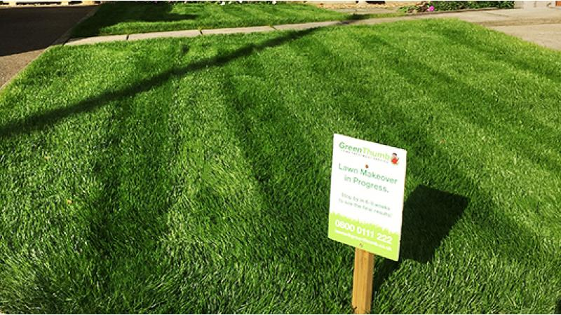 Lawn Makeover - Your Local Lawn Care Specialists