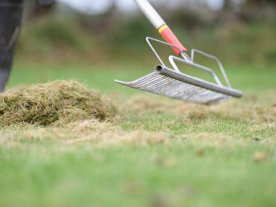 Raking Scarification Waste
