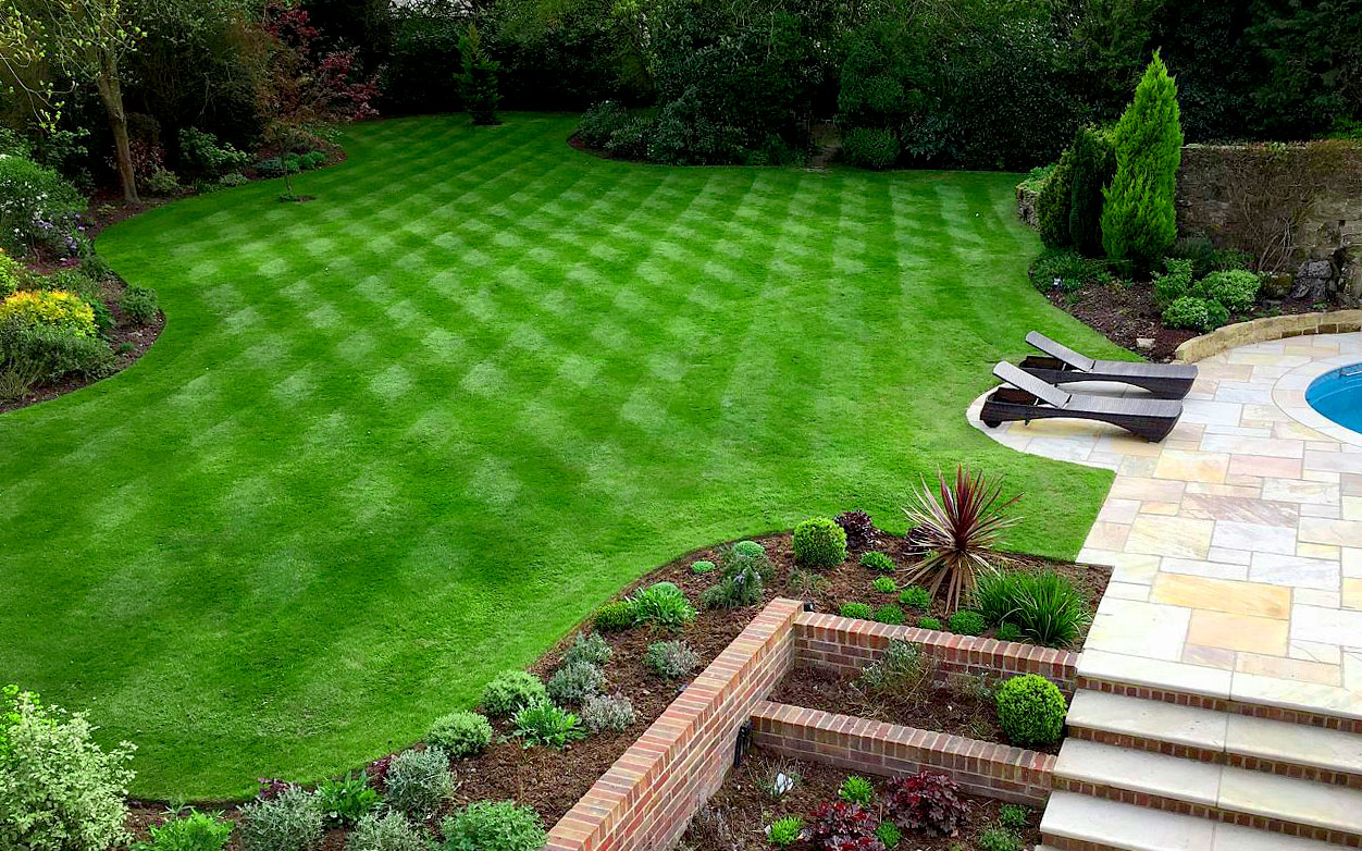 Checkered Lawn