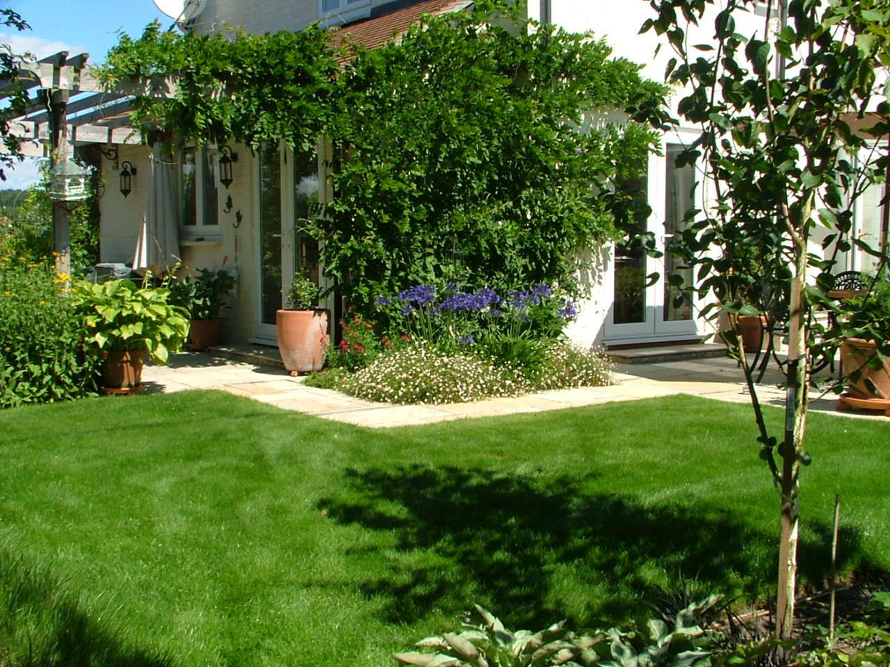 GreenThumb (Aylesbury) - Your Local Lawn Care Service