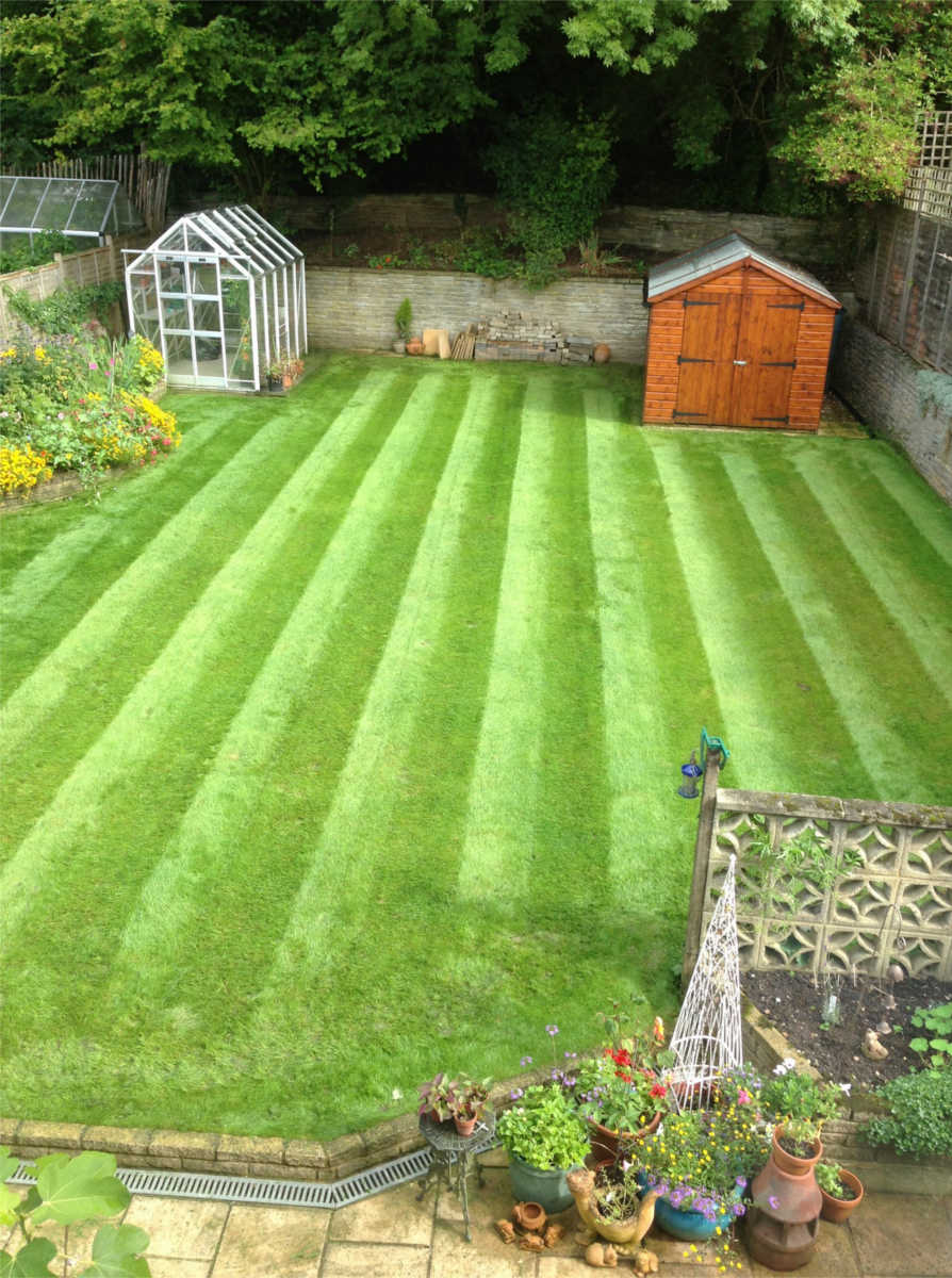 Possible speak green thumb lawn maintenance are