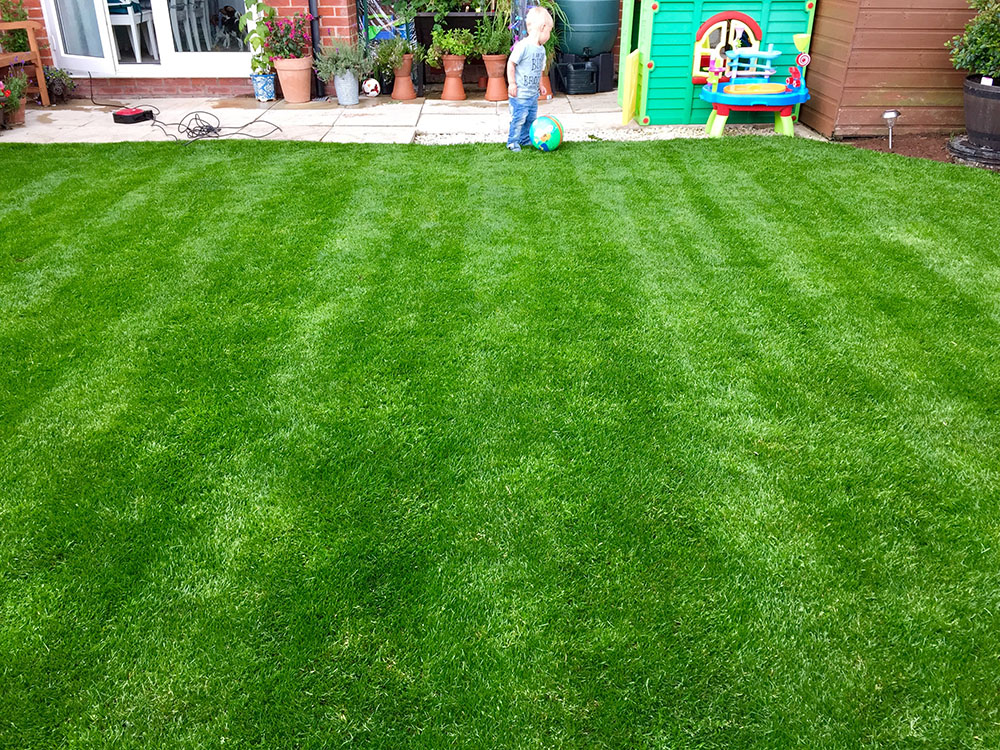 Greenthumb lancaster your local lawn care service for Local lawn care services
