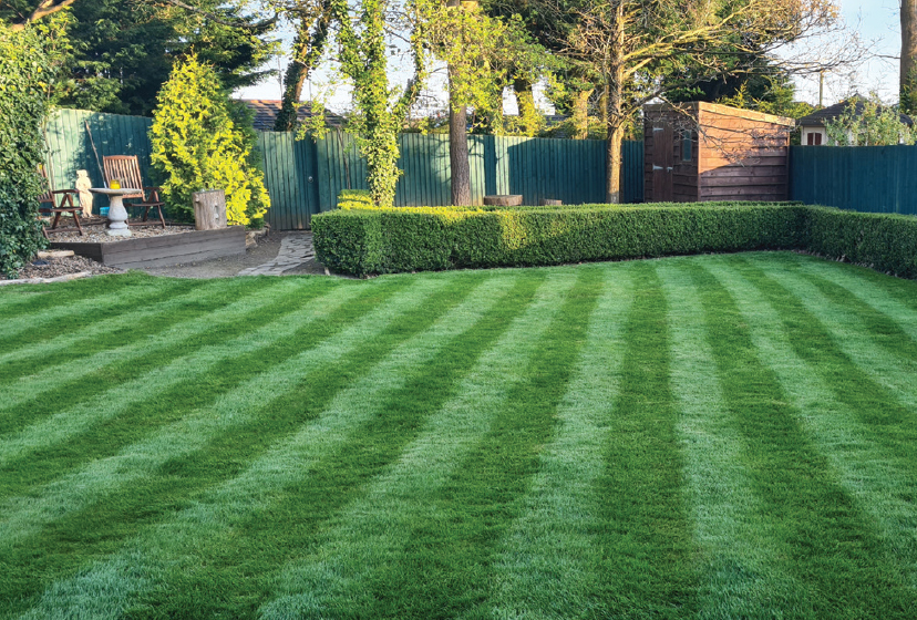 A lush green winter lawn in front with stripes mown in